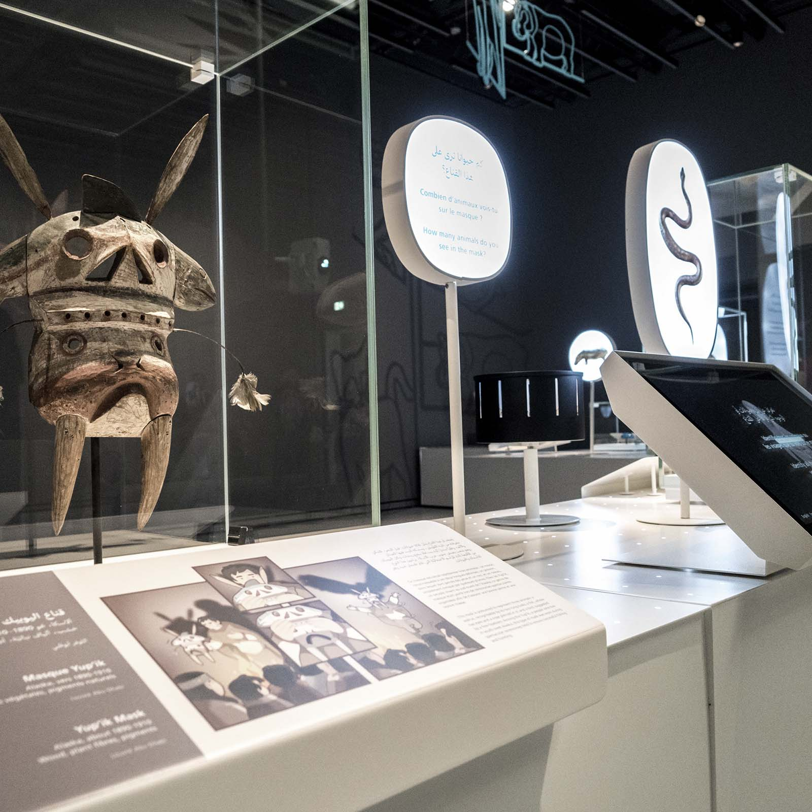 Creating a Children's Museum, Exhibition Animals, between real and imaginary, innovative exhibitions, France Muséums, Cultural engineer